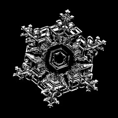 White snowflake on black background. Illustration based on macro photo of real snow crystal: beautiful star plate with fine hexagonal symmetry, six short, broad arms and glossy relief surface.
