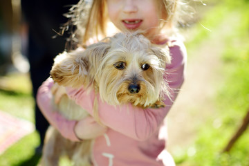 Cute little girl holding her funny yorkshire terrier dog. Kids and pets.
