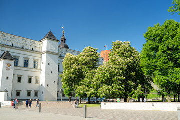 The Palace of the Grand Dukes of Lithuania