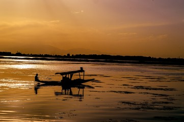 Shikaras (boats) on Dal Lake at sunset in Srinagar.