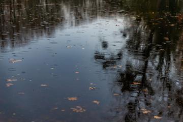 Gouttes de pluie faisant des ronds dans l'eau sur l'étang