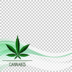 Cannabis. Sheet. Smoke, transparency. Template frame. Color. Logo