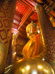 Golden large Buddha statue ,at Phanan Choeng temple ,Ayutthaya ,Thailand..