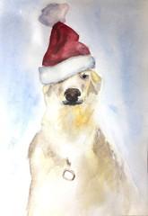 Watercolor dog in santa claus hat
