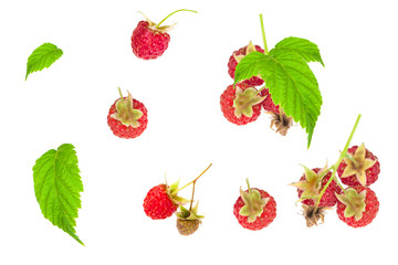 raspberry and leaf on a white background