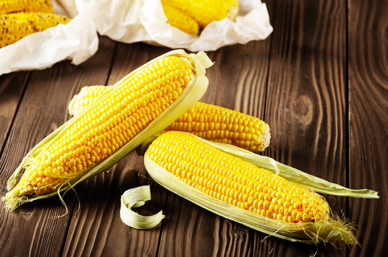 Kitchen table with raw and grilled sweet corn cob on baking paper
