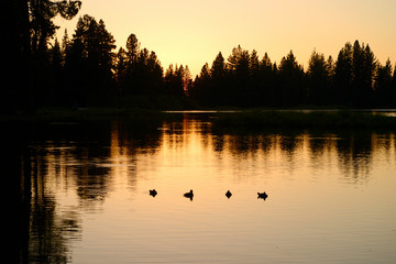 Lake Manzanita Sunset, Lassen National Park, USA