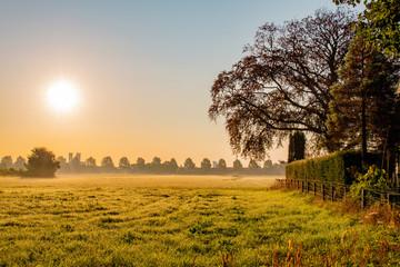 Landscape morning