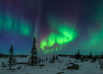 Fototapete - Aurora Borealis In The Arctic