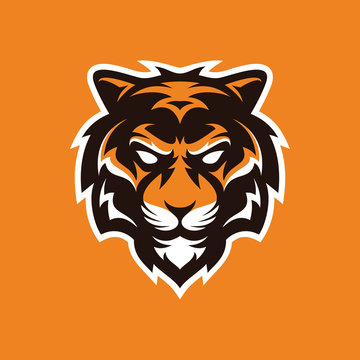Tiger mascot logo, animal tiger head illustration vector icon