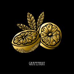 hand drawn golden fruits