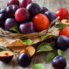 Fresh plums with leaves