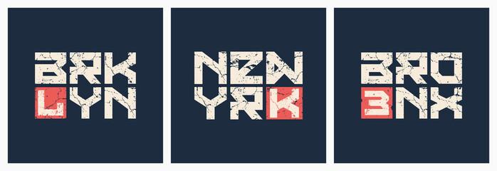 Brooklyn Bronx New York t-shirt and apparel grunge style vector