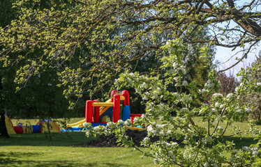 Spring in the garden, flowering plum branches; Everything is surrounded by a green grass and an inflatable children's playground is seen in the background.
