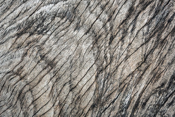 Pattern of wood surface for background.