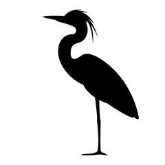 heron walking , vector illustration,,profile view,
