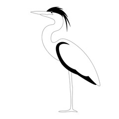 heron walking , vector illustration, lining draw