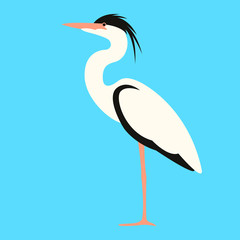 heron walking , vector illustration,flat style