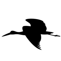 black heron flying , vector illustration ,  black silhouette