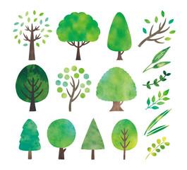 緑の木水彩セット