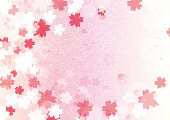 桜背景横ピンク