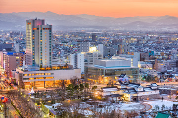Toyama City, Japan Downtown Skyline
