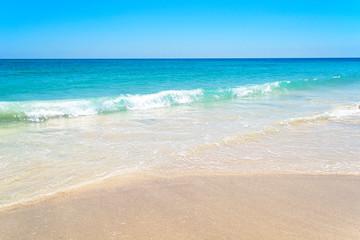 Seashore. Sea coast. Sandy beach