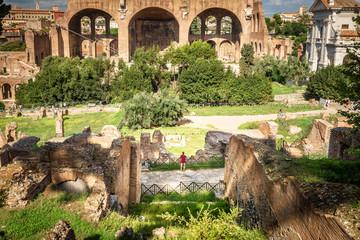 Roman Forum in summer, Rome, Italy