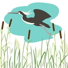 heron  flying ,vector illustration,flat style