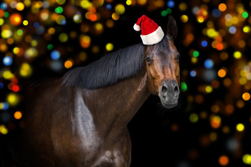 Christmas horse with red santa hat on bokeh background