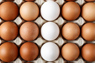 many chicken eggs in a tray