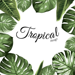 Tropical vector design border frame element. Green monstera philodendron jungle palm tree leaves assortment. Exotic greenery realistic drawing illustration. Text placeholder. White background.