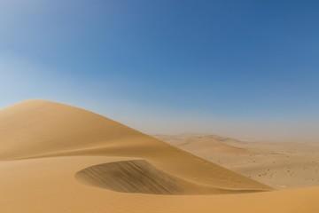 Namib desert panorama