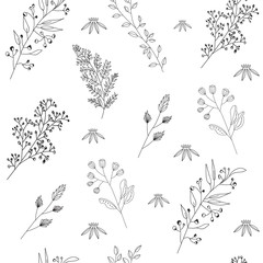 Vector seamless pattern with wild flowers, herbs and branches. Thin delicate lines silhouettes of different plants. Black and white isolated and adjustable objects on white background.