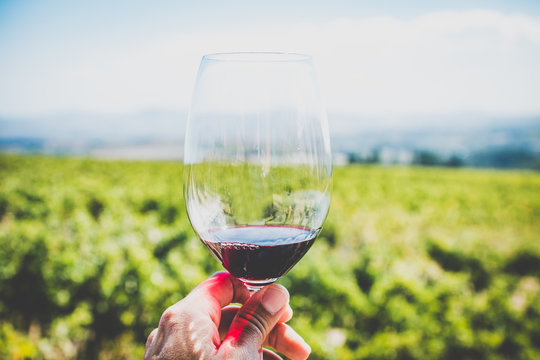 Schöner Shiraz Rotwein in Südafrika in der Region Stellenbosch