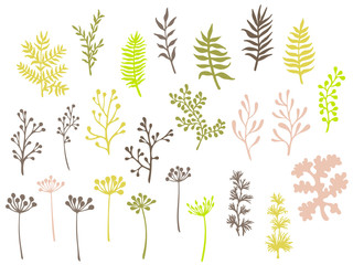 Willow and palm tree branches, fern twigs, lichen moss, mistletoe, savory grass herbs, dandelion flower vector illustrations set. Green brown branches, twigs floral collection isolated on white