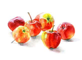 Watercolor food. Fresh fruits still-life. Ruddy small apples
