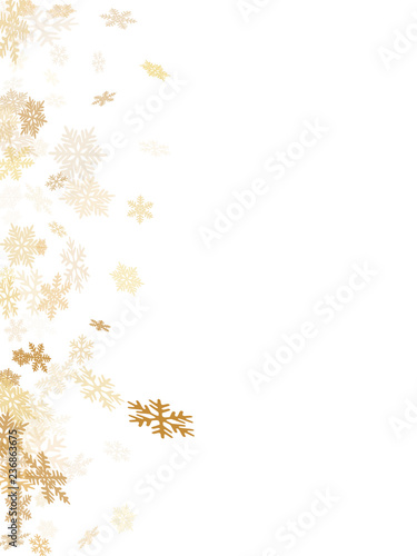 Winter snowflakes border magic vector background  Macro snowflakes