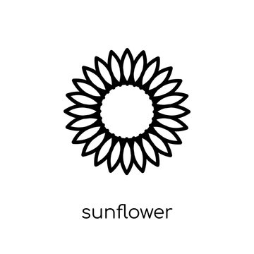 Sunflower icon from Ecology collection.