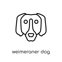 Weimeraner dog icon. Trendy modern flat linear vector Weimeraner dog icon on white background from thin line dogs collection