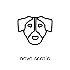 Nova Scotia Duck Tolling Retriever dog icon. Trendy modern flat