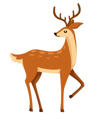 Brown deer. Hoofed ruminant mammals. Cartoon animal design. Cute deer with antlers. Flat vector illustration isolated on white background