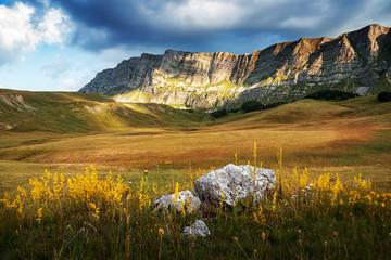 Wonderful picturesque landscape