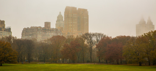 Great Lawn,  Central Park, NYC