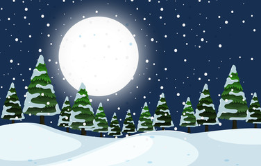 A winter outdoor night scene