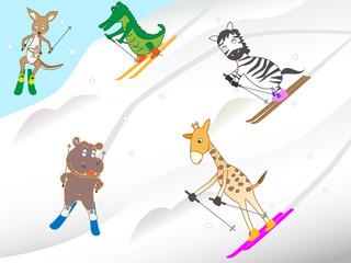 動物のスキー。