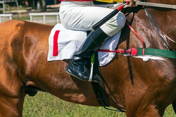 Jockey leg closeup