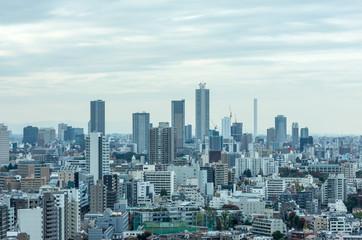 東京後楽園から望む池袋方面