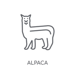 Alpaca linear icon. Modern outline Alpaca logo concept on white background from animals collection
