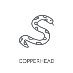 copperhead linear icon. Modern outline copperhead logo concept on white background from animals collection
